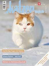 Katzen Magazin 6/2014