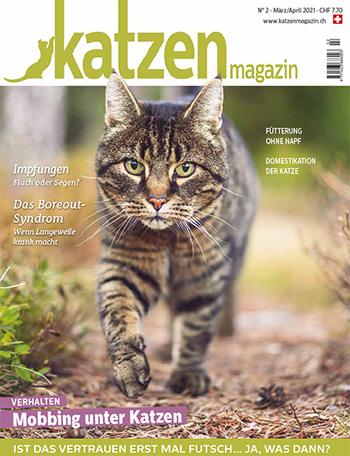 Aktuelle Katzen Magazin Ausgabe